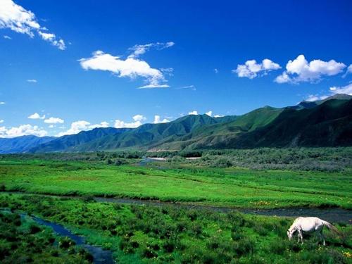 01Magic Tibet XIV -- Nyingchi.jpg