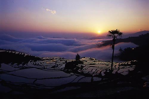 005Ailao Mountain.jpg