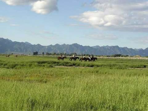 004_Kangxi Grassland.jpg