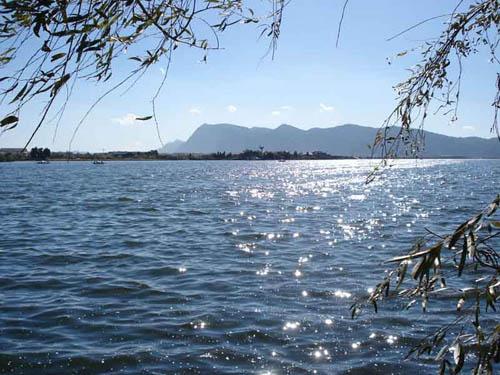 005Xingyun Lake.jpg