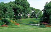 cd27_Tomson Golf.jpg